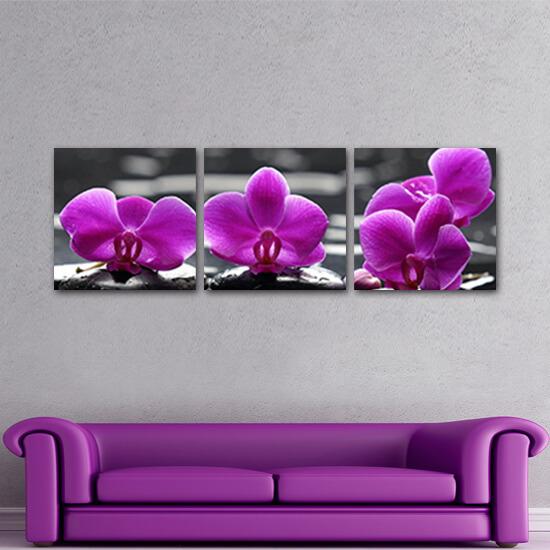 Лилава орхидея