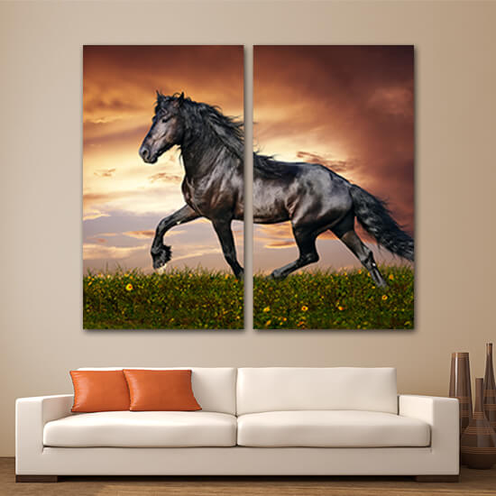 Черен кон